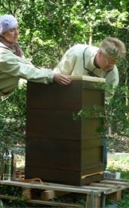 Dreistöckige Bienenbeute