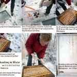 Oxalsäurebehandlung im Winter