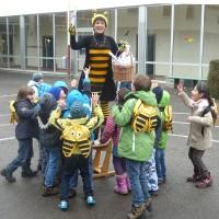 Die Bamberger Schulbiene in der Hainschule
