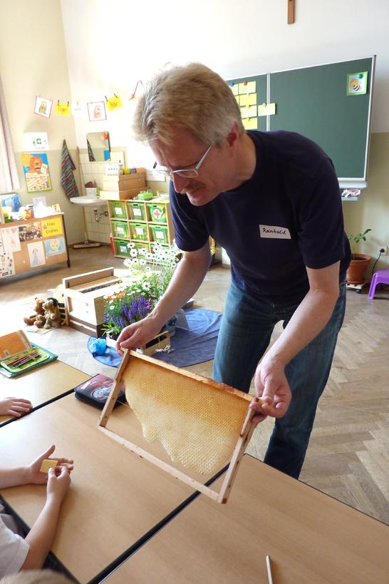 Schulimker Reinhold Burger zeigt einen Wildwabenbau