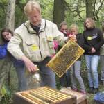 Lehrbienenstand Wildensorg-Rinnersteig