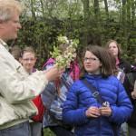 Reinhold erklärt Pollen und Nektar