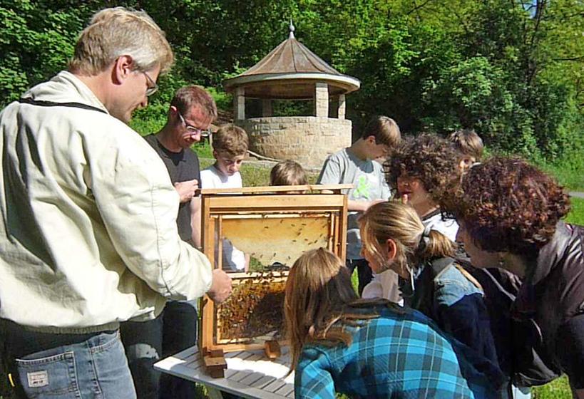 Bienenschaukasten am Aussichtstempelchen