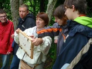 Imkerin zeigt den Jugendlichen ein verdeckeltes Honigrähmchen