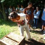 Lehrerin beugt sich über die geöffnetet Bienenbeute
