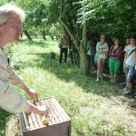 Schulklasse vor geöffneter Bienenbeute am Lehrbienenstand
