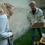 Amelie und Reinhold betrachten ein Rähmchen voller Bienen