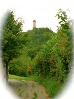 Weg zur Altenburg