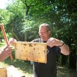 Arne Butscher hält eine Honigwabe mit noch ansitzenden Bienen in die Höhe