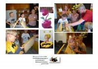 Fotocollage Schulbienenunterricht
