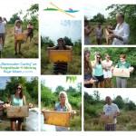 Bienenwaben-Casting – Gäste auf montierten Einzelfotos halten Honigwaben in der Hand
