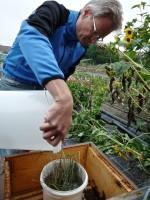 """Füttern der Bienen am Standort """"Gärtnerstadt-Heiliggrab"""""""