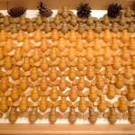 Bienen aus 100% reinem Bienenwachs