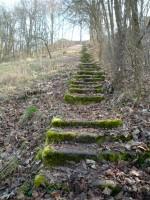 Treppen zur Wallburg in Eltmann