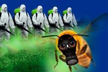 Bienensterben - Campact Kampagne