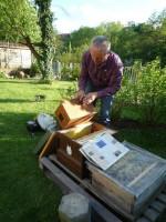 Niklaus Hofmann schlägt den Schwarm in eine freie Zarge ein