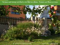Elkes Kräuterspiralgarten
