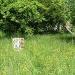 Bemalte Patenbienenbeute auf künftigen Lehrbienenstandort