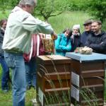 Reinhold Burger zeigt den VHS-Teilnehmenden ein Rähmchen mit Bienen