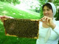 Bamberger Schulbiene hält Bienenwabe hoch