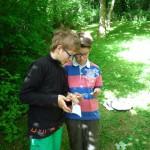 2 Schüler blättern in einem Info-Heftchen zur Biene