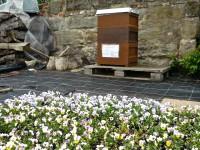 Bienenpatenbeute von Carmen Dechant in der Hofstadtgärtnerei, Bamberg
