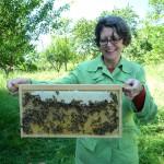 Teilnehmerin Conny mit Bienenwabe