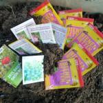Samentütchen aus verschiedenen Aktionen