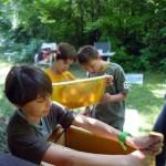 Fachmännischer Blick auf Honigwabe und Einsatz des Stockmeisels