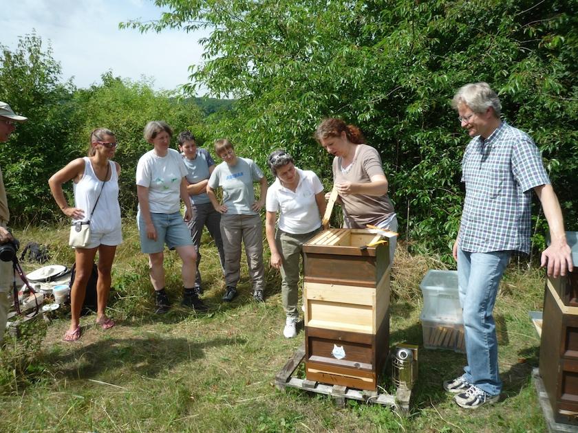 Honigschleudergruppe um Beute