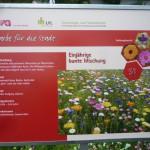 Tafel einer Blühwiese in den Außenanlagen der LWG Veitshöchheim, An der Steige