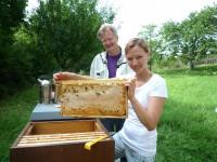 Katharina hält Honigwabe hoch