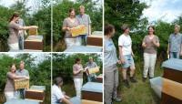 Elke Puchtler beim Honigernten (Fotocollage)