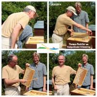 Thomas Puchtler beim Honigernten (Fotocollage)