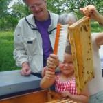 Lola und Gabi kehren die ansitzenden Bienen zurück in die Beute