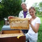 Katharina hält eine selbst gezogene Bienenwabe in die Höhe