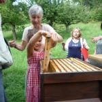 Lola zieht eine Honigwabe heraus