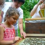 Der Höhepunkt: Ilona zeigt, dass man Bienen streicheln kann