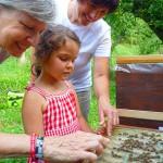 Auch Oma Gabi streichelt über die Bienen