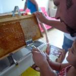 Papa hilft Lola beim Entdeckeln der Honigwabe