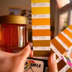 Honigfarbe bestimmen mit einem Farbfächer