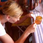 Katharina etikettiert ihr Honigglas