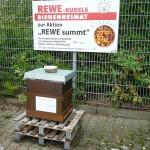 """Bienenstandort """"Berggebiet / Hohes Kreuz"""" am REWE-Rudel-Markt"""