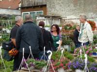 Gärtnerei-Führung durch Carmen Dechant, Hofstadt-Gärtnerei