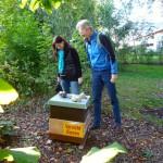 Die neue Bienenpatin Wiebke Burkart besucht den Standort auf der Erba-Insel