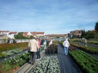 Hofstadt-Gärtnerei am Tag der offenen Gärtnereien 2014
