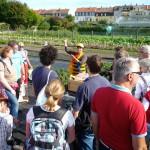 Der Stand der Initiative Bienen-leben-in-Bamberg.de mit vielen Gästen