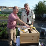 Imkerliches Fachsimpeln am Stand der Initiative Bienen-leben-in-Bamberg.de mit Reinhold Burger