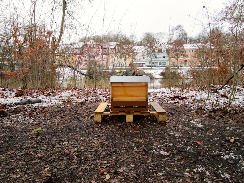 Bienenstandort an der Regnitz