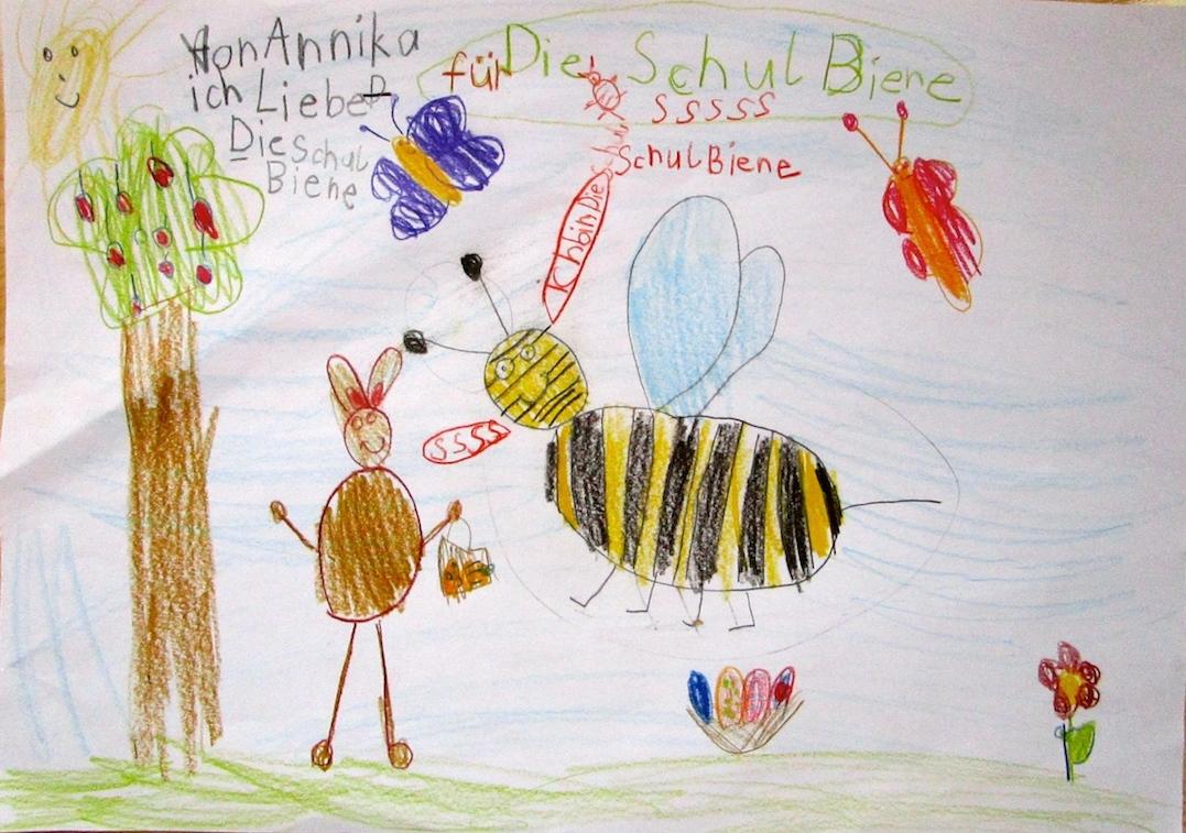 Biene   bienen-leben-in-bamberg.de